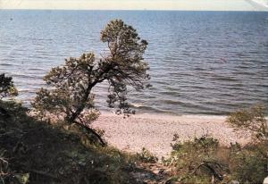 Pobierowo-stare-zdjecie-37